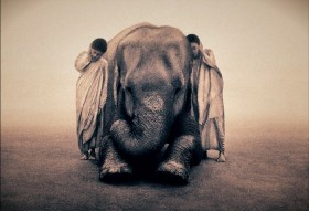 Грегори Колбер (Gregory Colbert), фотоалбом - Пепел и Снег/Ashes-and-snow
